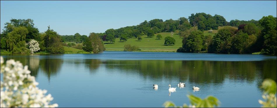 Sherborne Castle - Capability Brown Gardens & Landscape